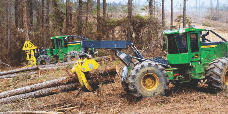 forestry Industry